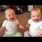 Thật ngộ nghinh hai đứa trẻ giành núm vú